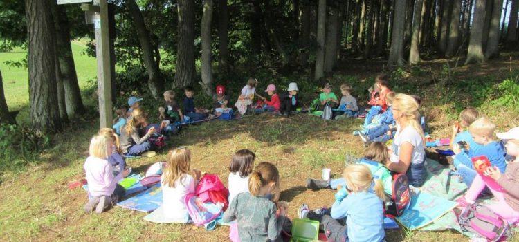 Abenteuerreicher Sommer im Kindergarten